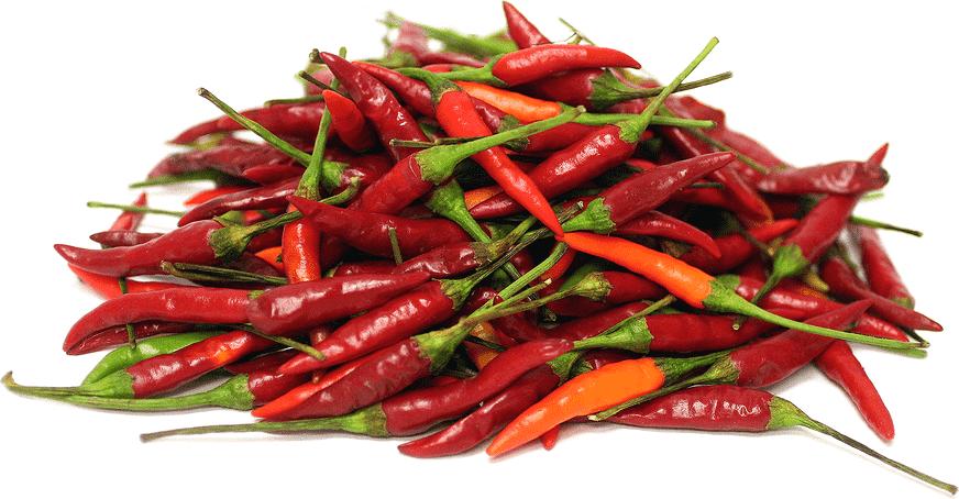 Top 10 Spiciest Dishes in Thailand!