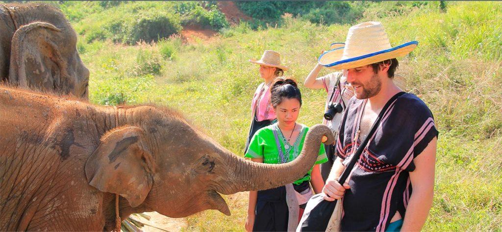 The Happy Elephant Home