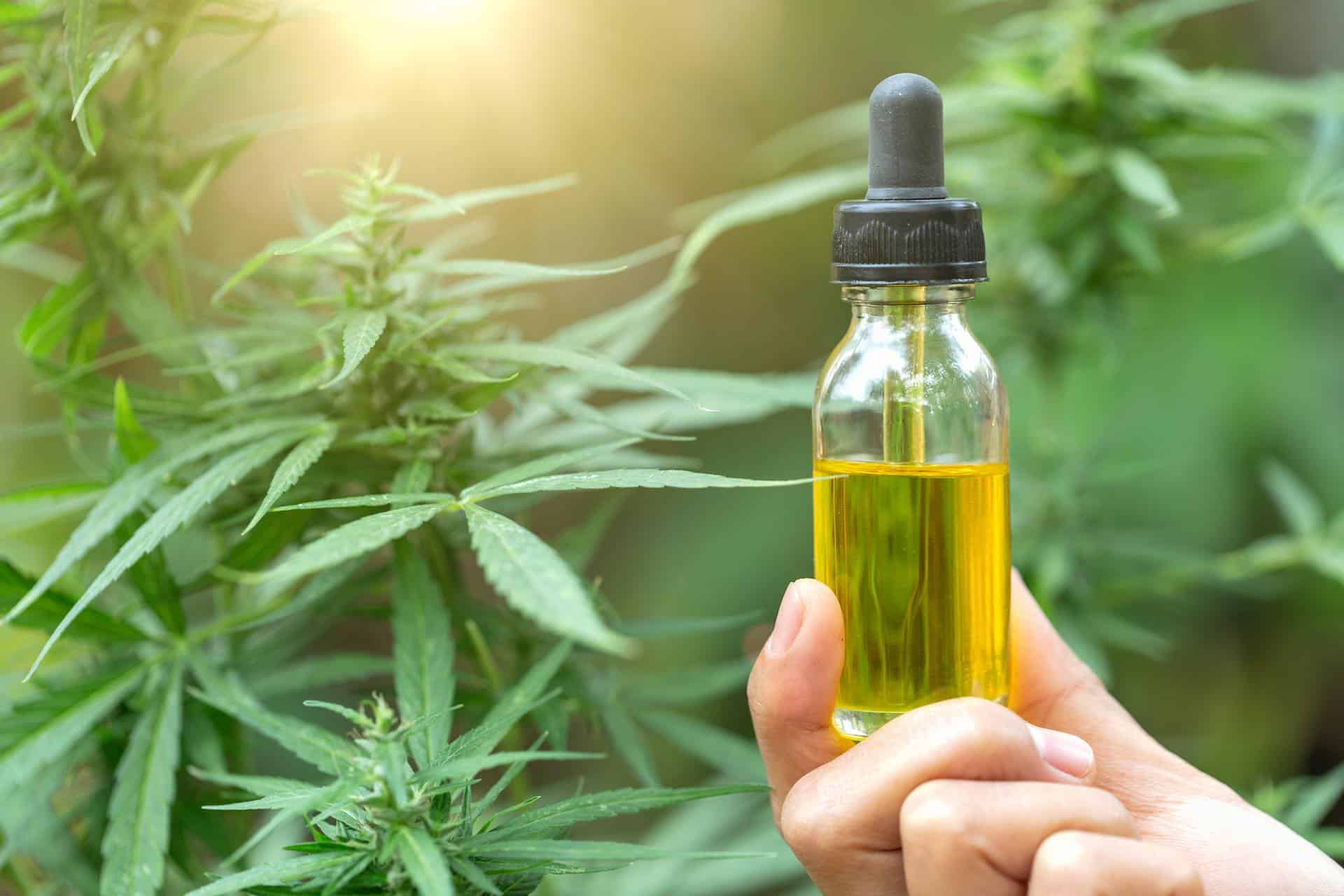 Marijuana Oil Extract Distributed to Nationwide Hospitals in